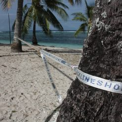 15-meter-slacklineshop-co-nz-beach-tree-palmtree