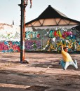 Gibbon-slackline_Surfer-Line-30-meter-slacklining-graffiti-action-new-zealand