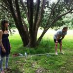 paekakariki-slacklining-in-park