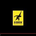 secret-spot-gibbon-slackline-session-summer-start-2016-new-zealand