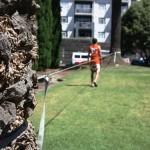 slackline-tree-anchor-extension