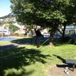 slackline-tricks-how-to-land