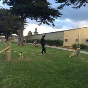 slacklining-without-trees-park-porirua-new-zealand