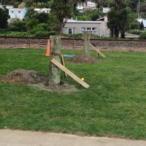 under-construction-slackline-park-porirua-new-zealand